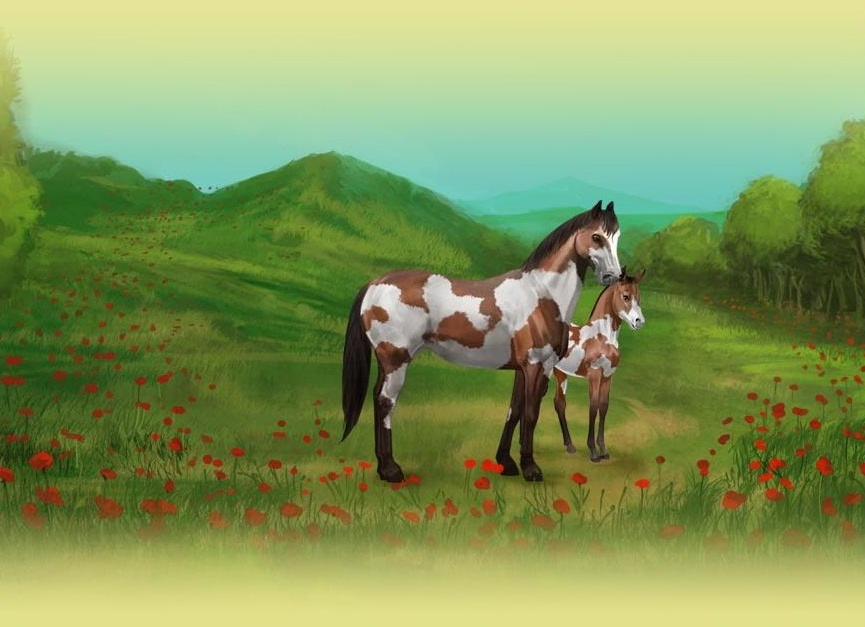 Image of: Virtual Howrse National Geographic Kids Virtual Animal Games Virtual Worlds For Teens
