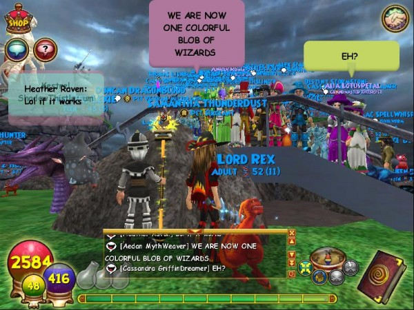 wizard101-15