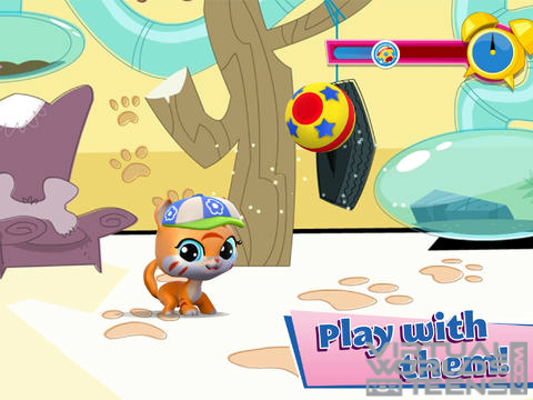 Littlest Pet Shop5
