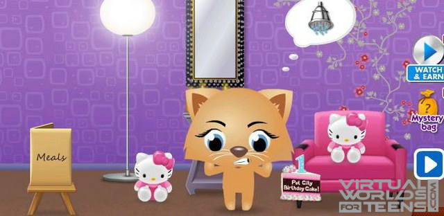Pet City 7