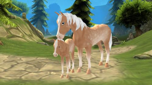 Horse Paradise